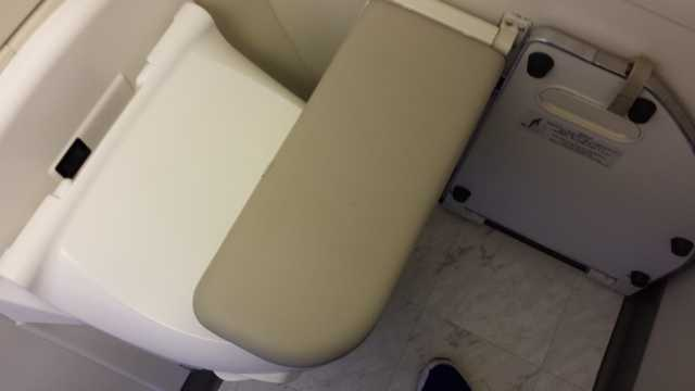 JAL First Class Bathroom 3
