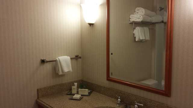 Seattle Hilton Airport Bathroom 1